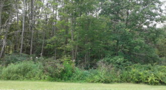 Naugle Drive/Fifty Acre Road – Lot 3